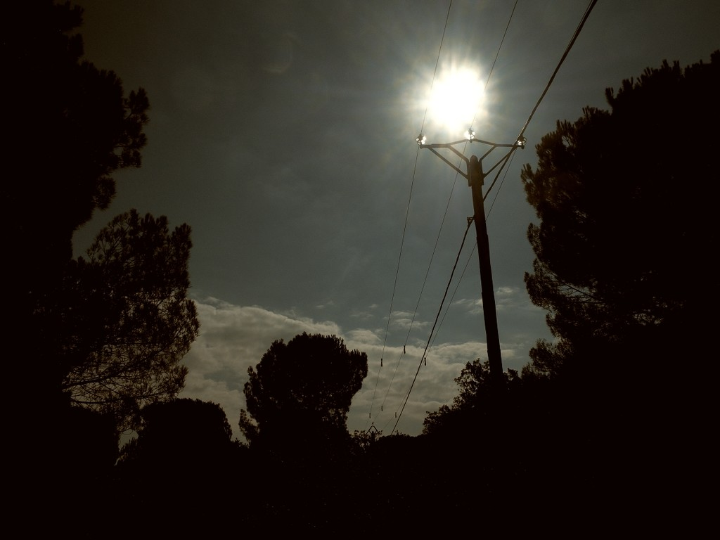 The Sun, a pole and some wires. by laroque