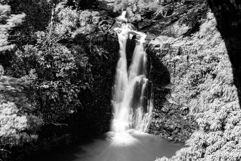Maui Waterfall by swchappell