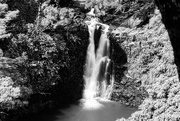 21st Jun 2016 - Maui Waterfall