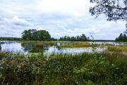 3rd Sep 2016 - Makepeace Lake
