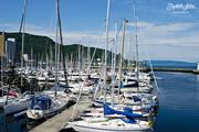 22nd Aug 2016 - Sailboats