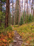 7th Sep 2016 - Hiking in Colorado