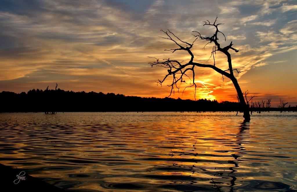 September Sunrise by lynnz