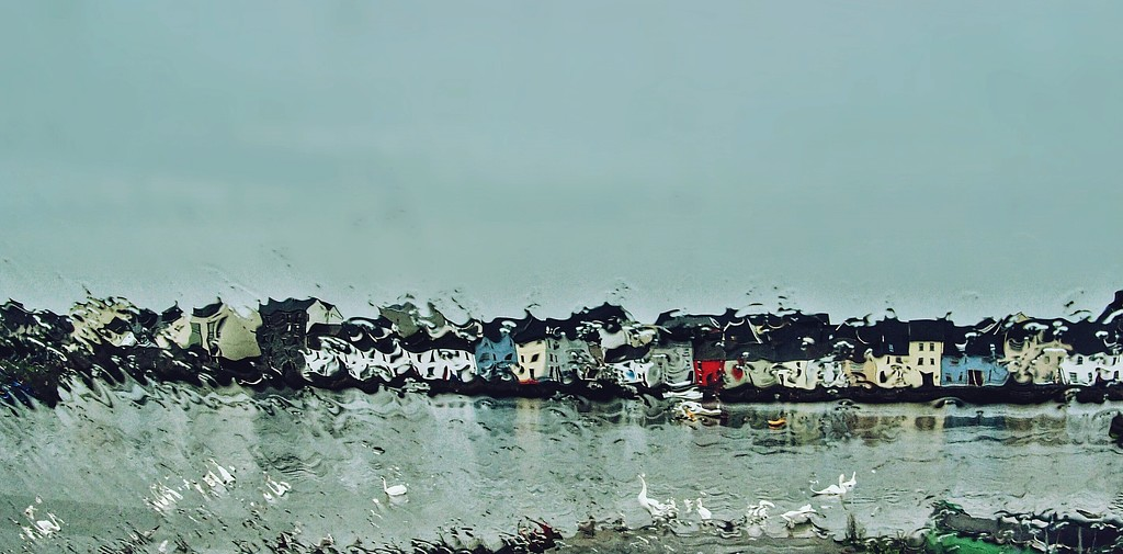swans and houses and rain by jack4john