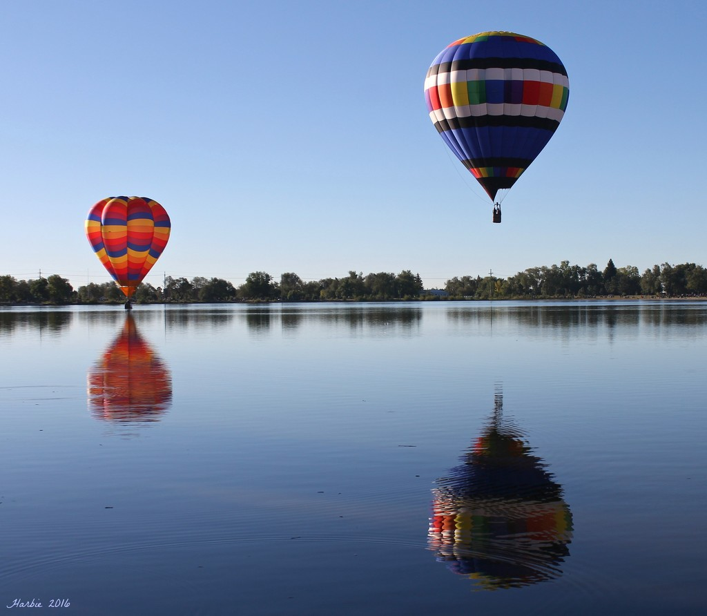 Colorado Springs Balloon Classic by harbie
