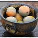 Reine-Claude plums by laroque