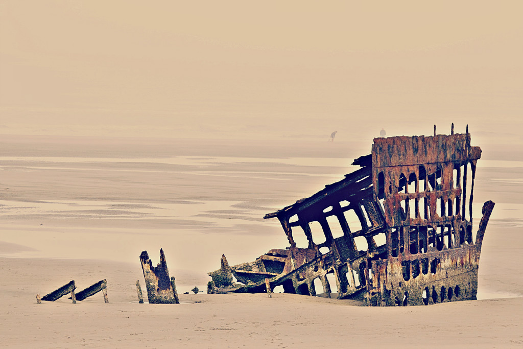 The Peter Iredale Shipwreck by fearinnocent
