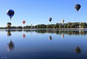 8th Sep 2016 - More Balloons