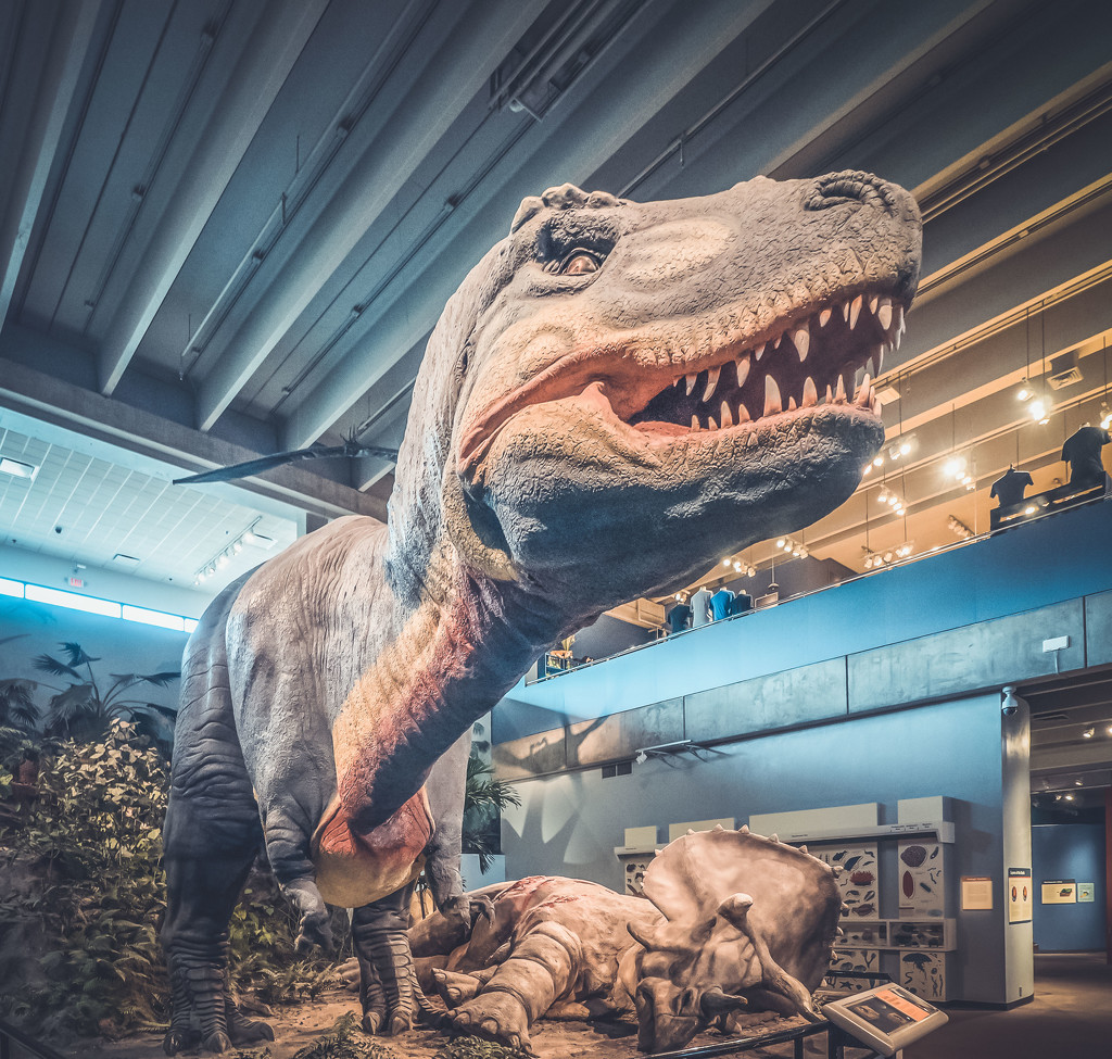Prehistoric by rosiekerr
