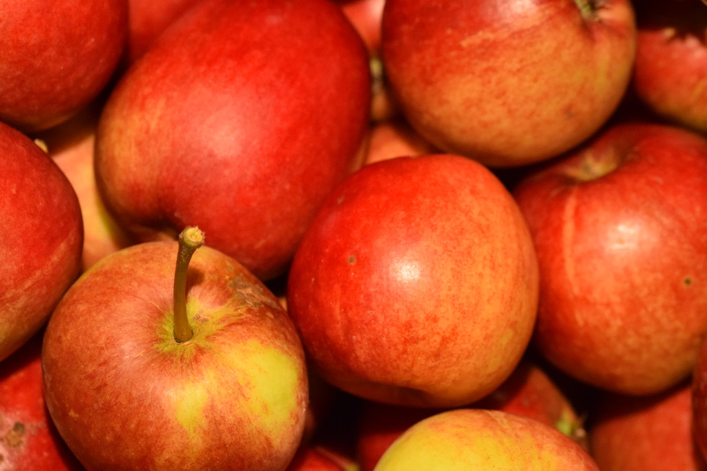 Katy apples by christophercox