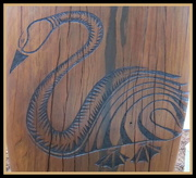 13th Sep 2016 - Swan carving on a Totem pole.  Cotton Tree