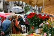 23rd Apr 2016 - Sant Jordi