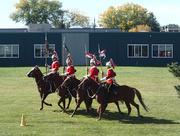 16th Sep 2016 - The Cavalry!
