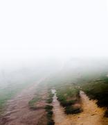 18th Sep 2016 - Into the fog