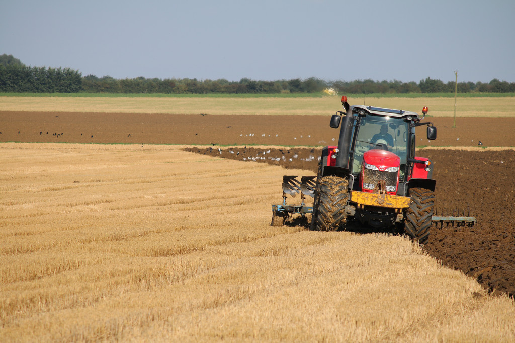 Sunday Ploughing by phil_sandford