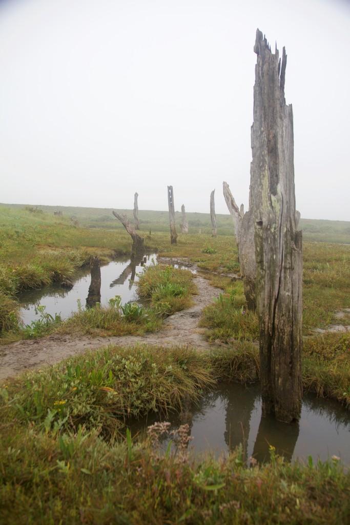 Slippery path by padlock