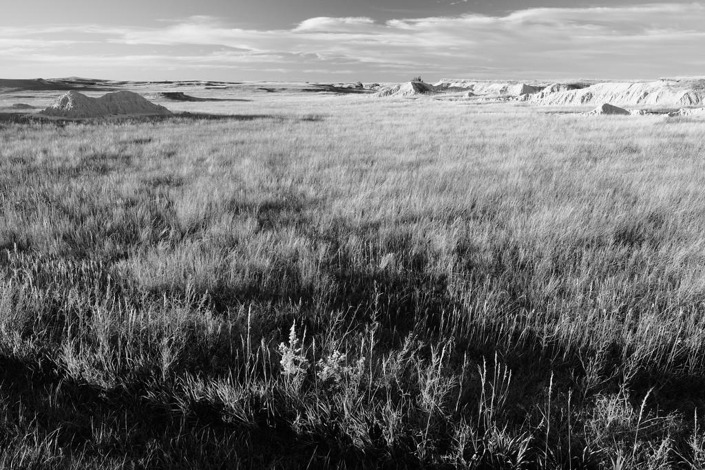 Badlands: High Prairie by tosee