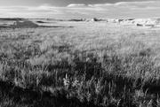 10th Sep 2016 - Badlands: High Prairie