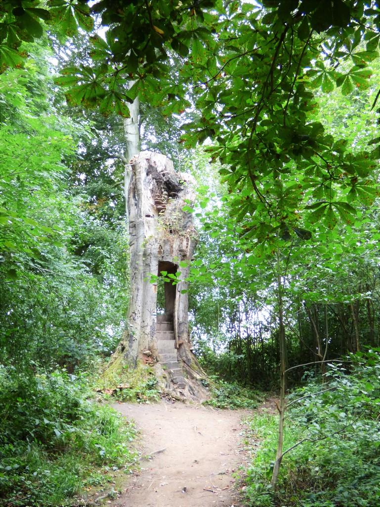 Wood carvings in situ  by beryl