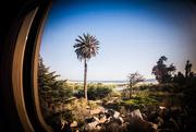 16th Sep 2016 - On the Train (Santa Barbara Series)