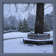 14th Dec 2010 - The Quiet of Snow