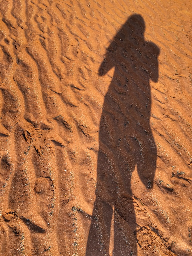Sandy Shadow by cookingkaren