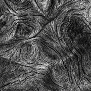 27th Sep 2016 - Wooden textures