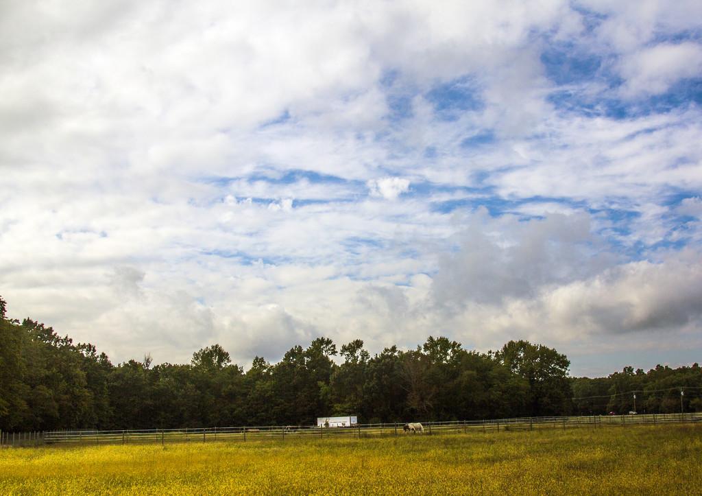 Horse Farm and Sky by hjbenson