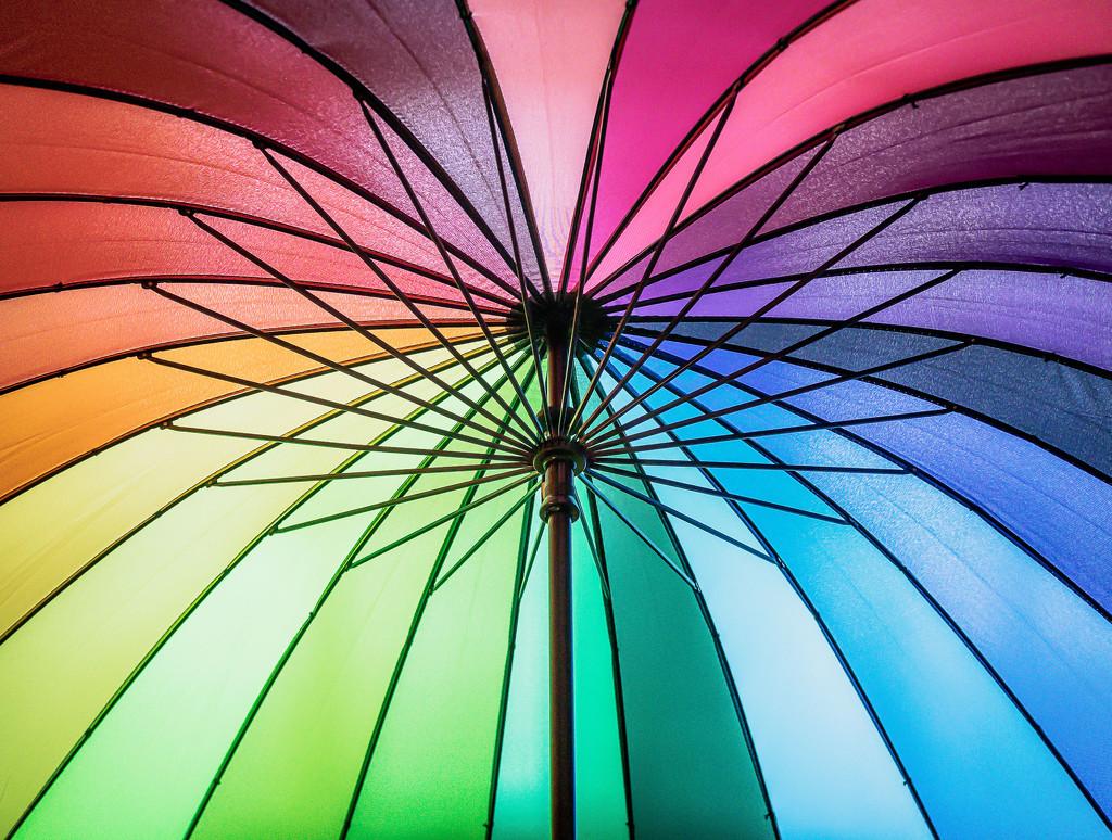 Rainbow Overhead by rosiekerr