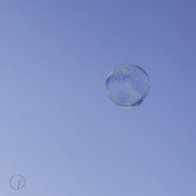 28th Sep 2016 - Bubble away
