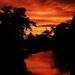 Sunrise this morning by shepherdmanswife