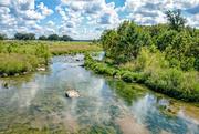 25th Sep 2016 - Pedernales River
