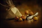 3rd Oct 2016 - 2016-10-03 drei nüsse für aschenbrödel