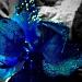 """A Blue Christmas"" by iamdencio"