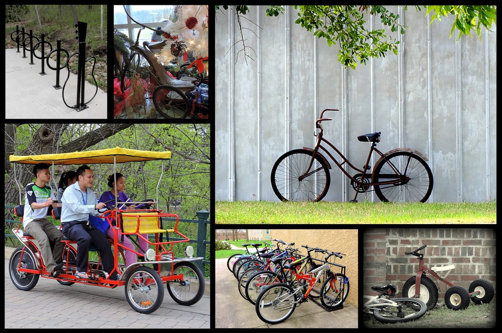 My Favorite Bicycles Photos in a Collage by homeschoolmom