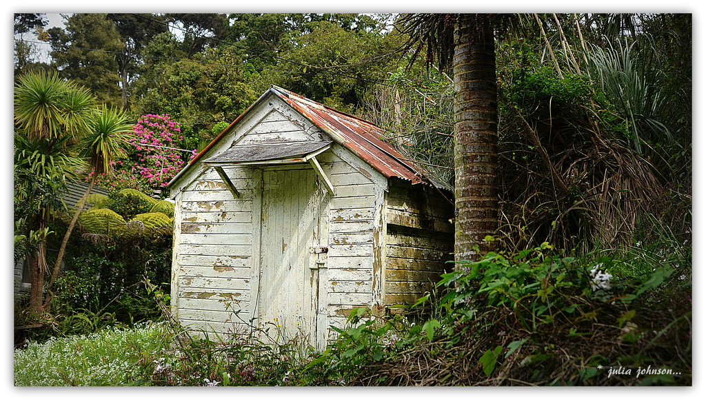 Shed at the bottom of the garden... by julzmaioro