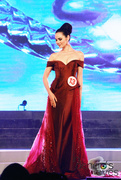 6th Oct 2016 - Best in Evening Gown