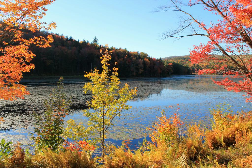 Vermont by lauriehiggins