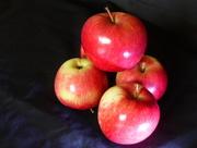 8th Oct 2016 - Apple pie time.