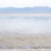 Seabird Coast