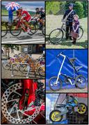 9th Oct 2016 - Bike-collage