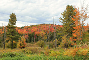 7th Oct 2016 - My favorite hill in Windham
