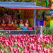 Colors of Floriade by pusspup