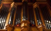 9th Oct 2016 - Organ Pipes