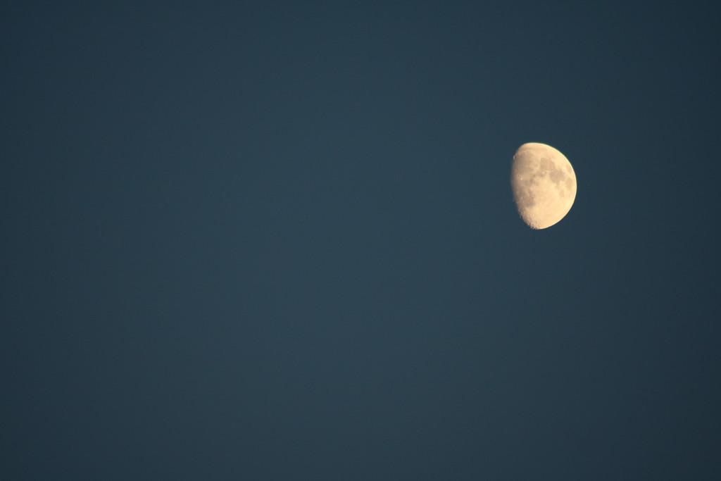 Autumn Moon by phil_sandford