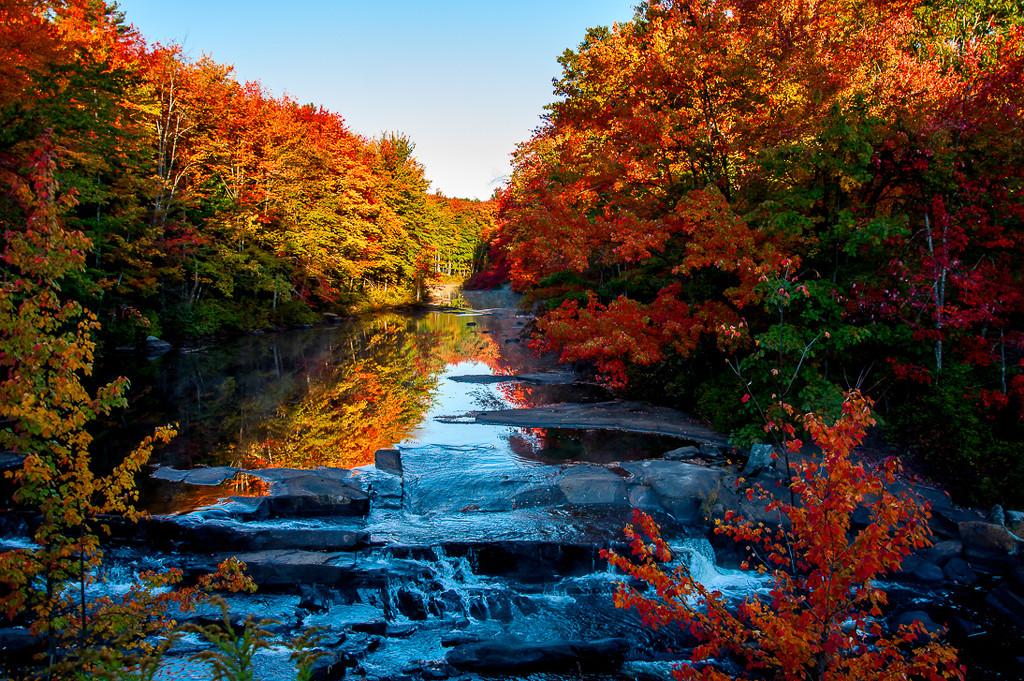 Autumn morning by joansmor