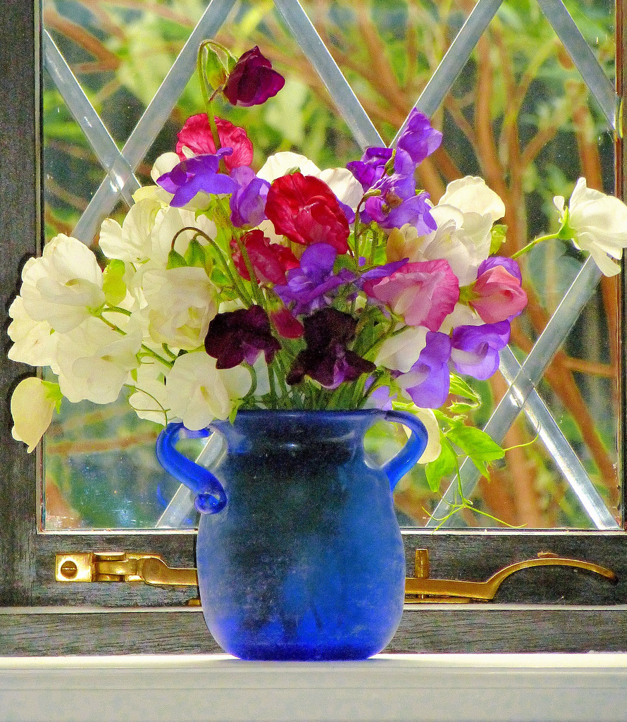 The last of the sweet -peas.... by snowy