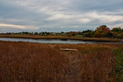 13th Oct 2016 - Spurwink River