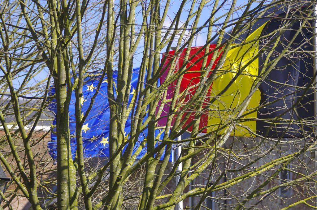 Flags at Hemiksem, Belgium. by ivan