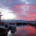 Husavik Harbour, Iceland.